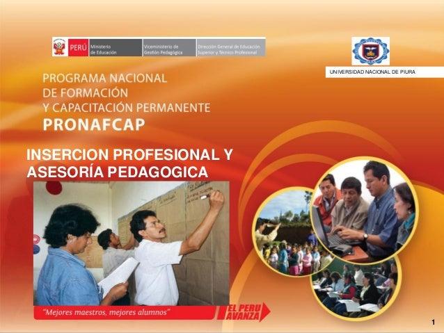 1 INSERCION PROFESIONAL Y ASESORÍA PEDAGOGICA UNIVERSIDAD NACIONAL DE PIURAiversidad