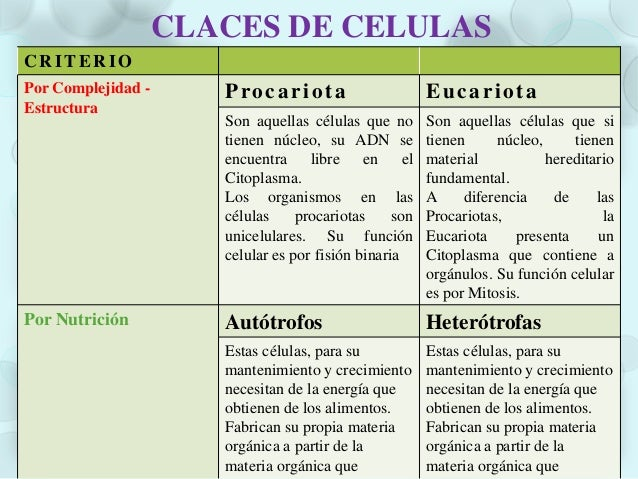 Por su forma de vivir Protistas AsociadasSon aquellas células queconviven solas con otrosseres vivos unicelulares,pueden s...