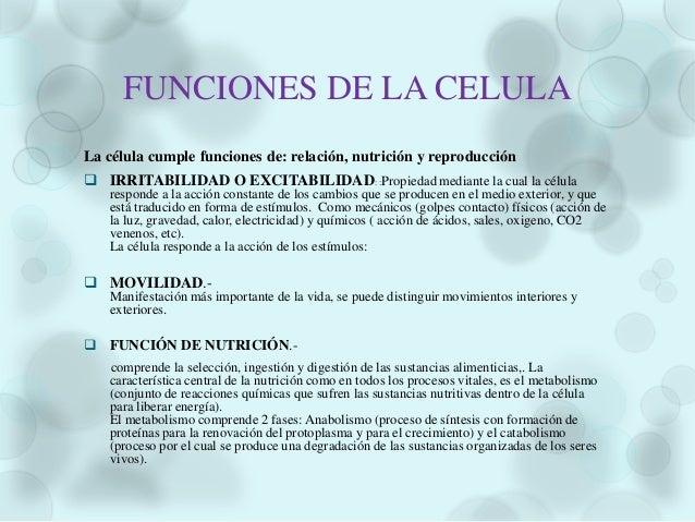  PROFASEEl centriolo o centrosoma se divide en dos partes se separan para ocupar polosopuestos en la célula.La cromatina ...