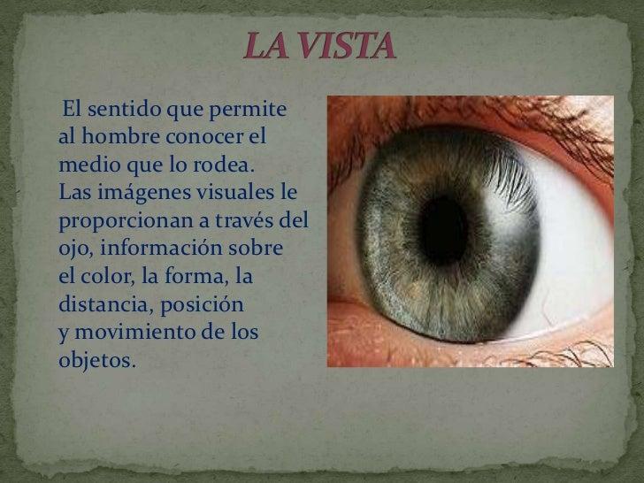 El sentido que permiteal hombre conocer elmedio que lo rodea.Las imágenes visuales leproporcionan a través delojo, informa...
