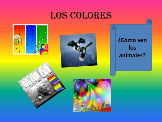 Los colores              ¿Cómo ven                 los              animales?
