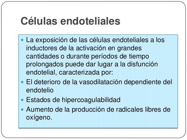 Células musculares lisas vasculares  Las actividades migratorias y proliferativas de las células musculares lisas están r...