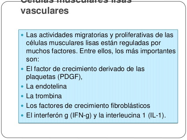 ARTERIOESCLEROSIS DE LAS CORONARIAS  Abstract  Atherosclerosis is a condition in which hardening and loss of elasticity ...