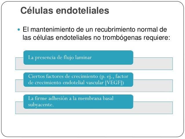 Células endoteliales  Las células endoteliales activadas:  Sufren cambios en su forma  Expresan moléculas de adhesión ...