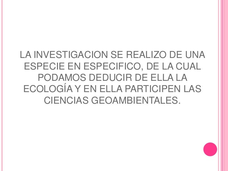 LA INVESTIGACION SE REALIZO DE UNA ESPECIE EN ESPECIFICO, DE LA CUAL    PODAMOS DEDUCIR DE ELLA LA ECOLOGÍA Y EN ELLA PART...