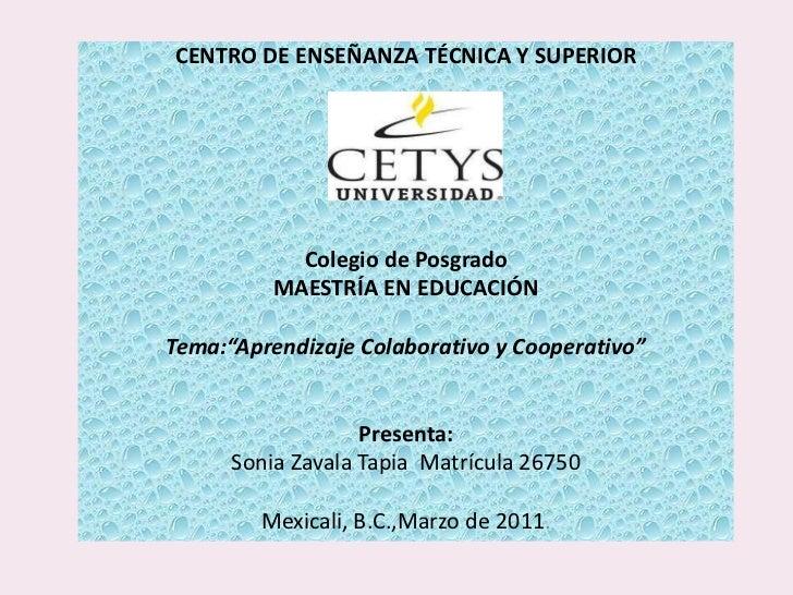 <br />CENTRO DE ENSEÑANZA TÉCNICA Y SUPERIOR<br /><br /><br /><br /><br /><br /><br />Colegio de Posgrado<br />MAES...