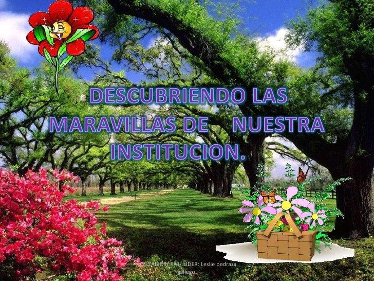 DESCUBRIENDO LAS<br />   MARAVILLAS DE    NUESTRA INSTITUCION.<br />LOS ZABIOS/ 8º3/ LIDER: Leslie pedraza gallego.<br />
