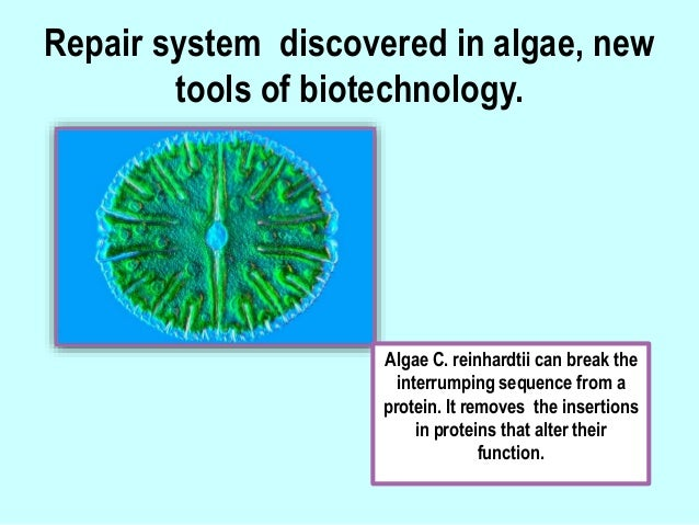 genetic information The role of genetics and the environment in the onset of many major noncommunicable diseases particularly monogenic diseases is well established consequently, genetic testing is gaining recognition for the many advantages it has to offer in the prevention, management and treatment of disease among.