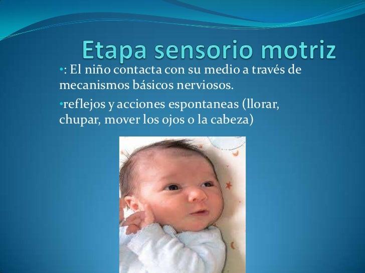 Etapa sensorio motriz<br /><ul><li>: El niño contacta con su medio a través de mecanismos básicos nerviosos.