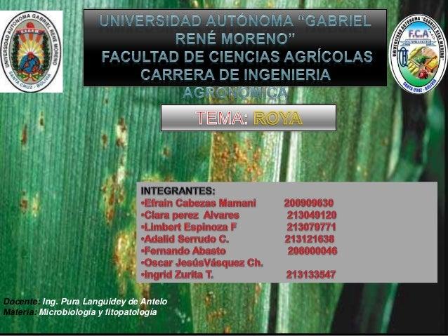 Docente: Ing. Pura Languidey de Antelo Materia: Microbiología y fitopatología