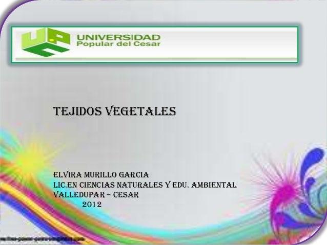 TEJIDOS VEGETALESELVIRA MURILLO GARCIALIC.EN CIENCIAS NATURALES Y EDU. AMBIENTALVALLEDUPAR – CESAR        2012