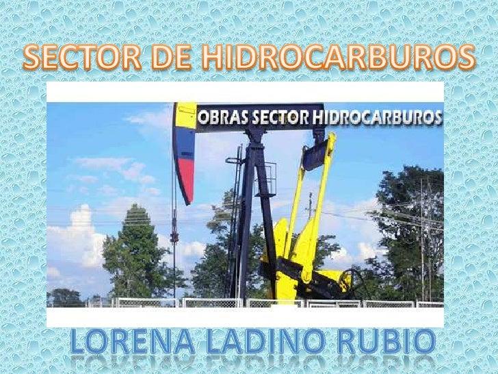 SECTOR DE HIDROCARBUROS<br />LORENA LADINO RUBIO<br />