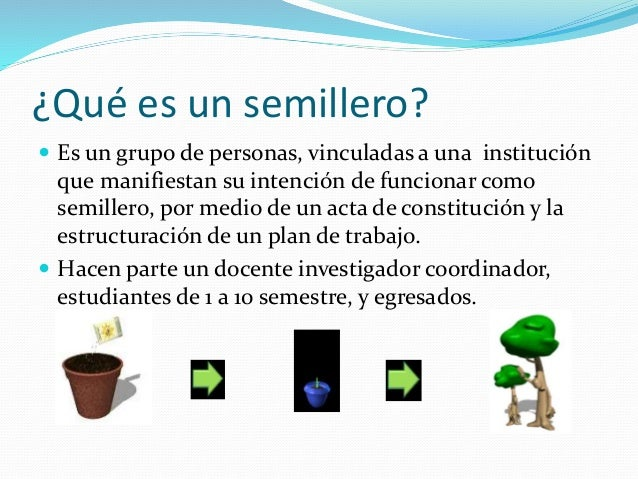 Diapositivas semillero for Que es un vivero escolar