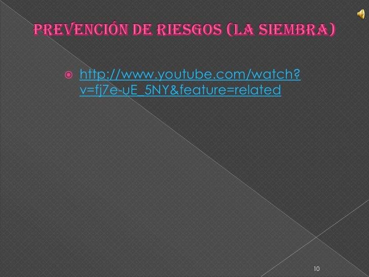 Prevención de riesgos (la Siembra)<br />10<br />http://www.youtube.com/watch?v=fj7e-uE_5NY&feature=related<br />