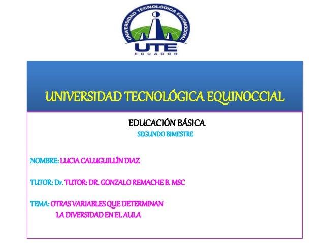UNIVERSIDADTECNOLÓGICA EQUINOCCIAL EDUCACIÓN BÁSICA SEGUNDOBIMESTRE NOMBRE:LUCIACALUGUILLÍNDIAZ TUTOR:Dr.TUTOR:DR. GONZALO...