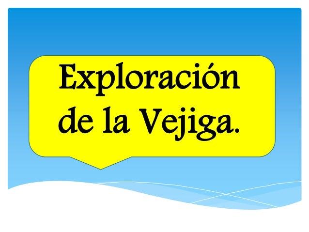Exploración de la Vejiga.