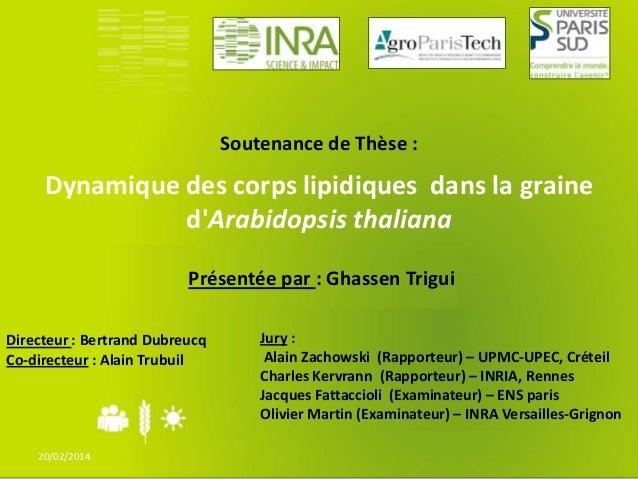 Soutenance de Thèse :  Dynamique des corps lipidiques dans la graine d'Arabidopsis thaliana Présentée par : Ghassen Trigui...
