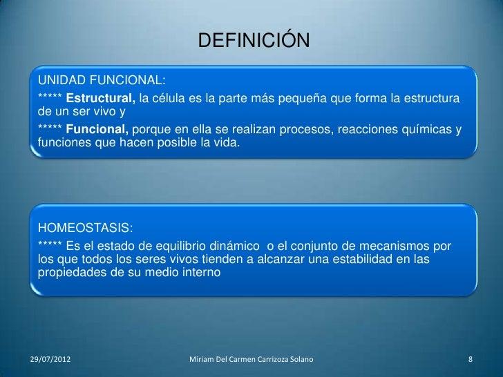 Dorable Definir La Anatomía Regional Ideas - Anatomía de Las ...