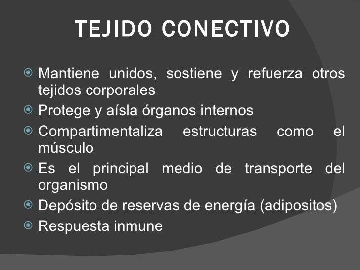 TEJIDO CONECTIVO <ul><li>Mantiene unidos, sostiene y refuerza otros tejidos corporales </li></ul><ul><li>Protege y aísla ó...