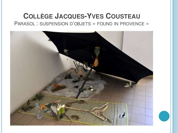 COLLÈGE JACQUES-YVES COUSTEAU