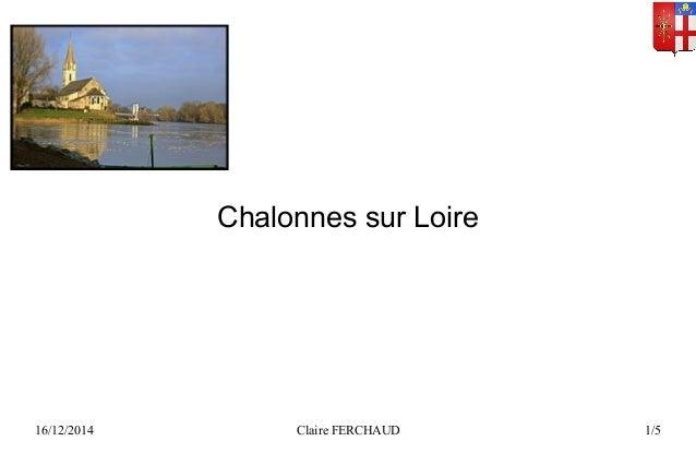 Chalonnes sur Loire  16/12/2014 Claire FERCHAUD 1/5