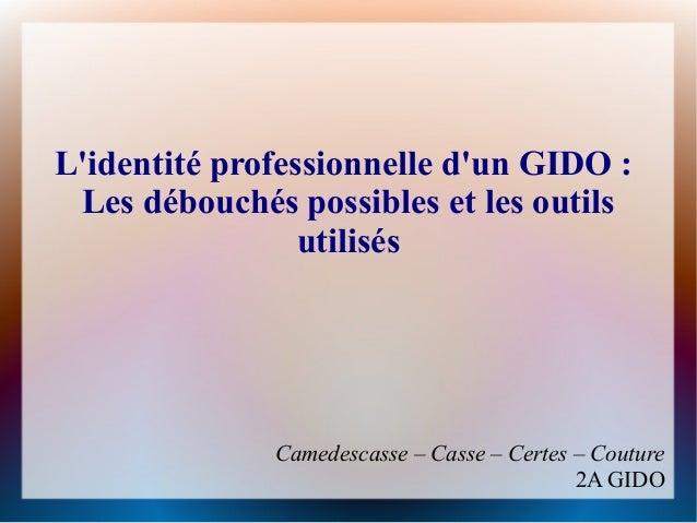 Lidentité professionnelle dun GIDO: Les débouchés possibles et les outils                 utilisés              Camedesca...