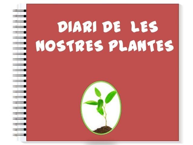 DIARI DE LESNOSTRES PLANTES