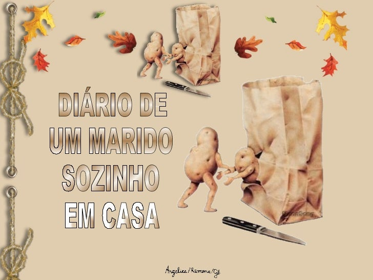 DIÁRIO DE UM MARIDO SOZINHO EM CASA