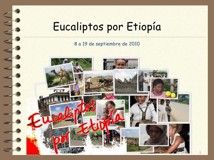 Eucaliptos por Etiopía 8 a 19 de septiembre de 2010