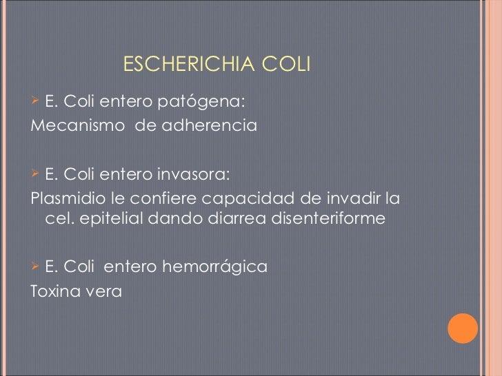 ESCHERICHIA COLI <ul><li>E. Coli entero patógena: </li></ul><ul><li>Mecanismo  de adherencia </li></ul><ul><li>E. Coli ent...