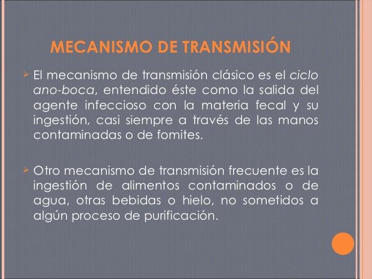 <ul><li>El mecanismo de transmisión clásico es el  ciclo ano-boca , entendido éste como la salida del agente infeccioso co...