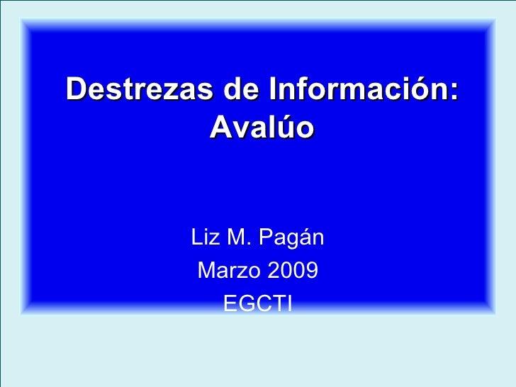 Destrezas de Información: Avalúo Liz M. Pagán Marzo 2009 EGCTI
