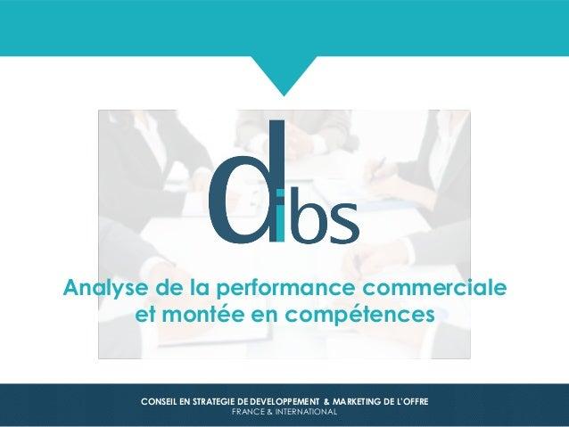 © Dibs I Confidentiel 1 CONSEIL EN STRATEGIE DE DEVELOPPEMENT & MARKETING DE L'OFFRE FRANCE & INTERNATIONAL Analyse de la ...