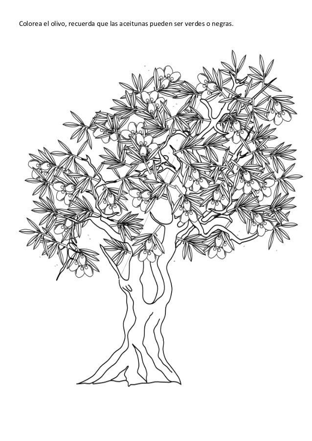 Dibuja las hojas y los frutos