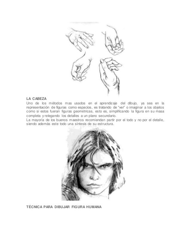 LA CABEZA Uno de los métodos mas usados en el aprendizaje del dibujo, ya sea en la representación de figuras como espacios...