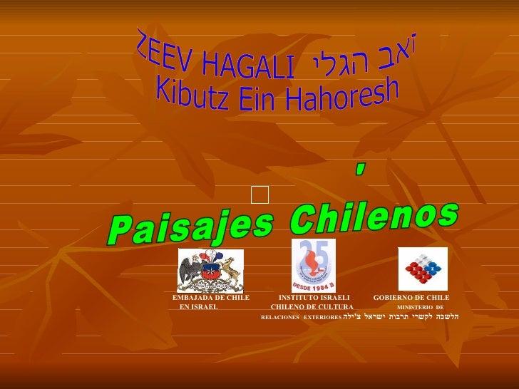 ZEEV HAGALI  זאב הגלי  Kibutz Ein Hahoresh  נופי צ'ילה  Paisajes Chilenos  EMBAJADA DE CHILE  INSTITUTO ISRAELI  GOBIERNO ...
