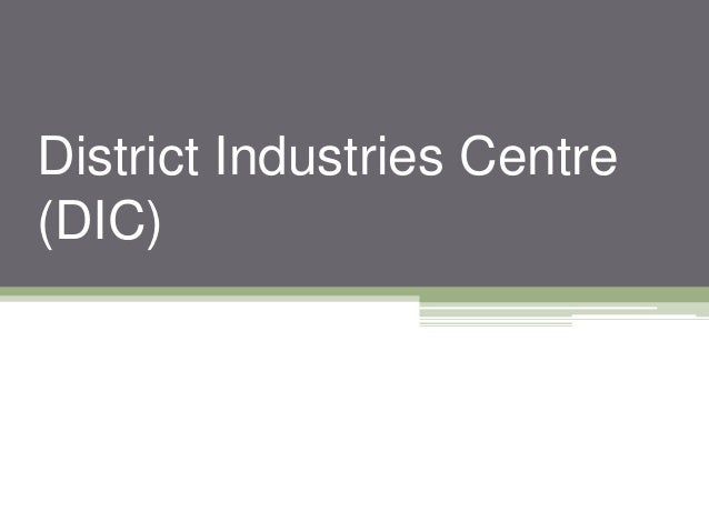 District Industries Centre (DIC)