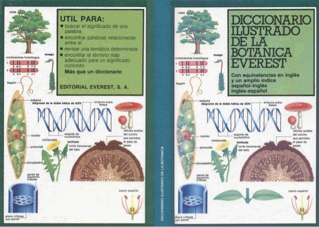 Libros DE Biologia: Botanica