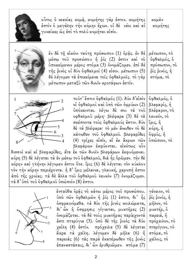 Diccionario en imagenes cuerpo humano
