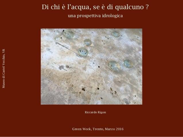 Di chi è l'acqua, se è di qualcuno ? una prospettiva idrologica Riccardo Rigon Green Week, Trento, Marzo 2016 MuseodiCaste...