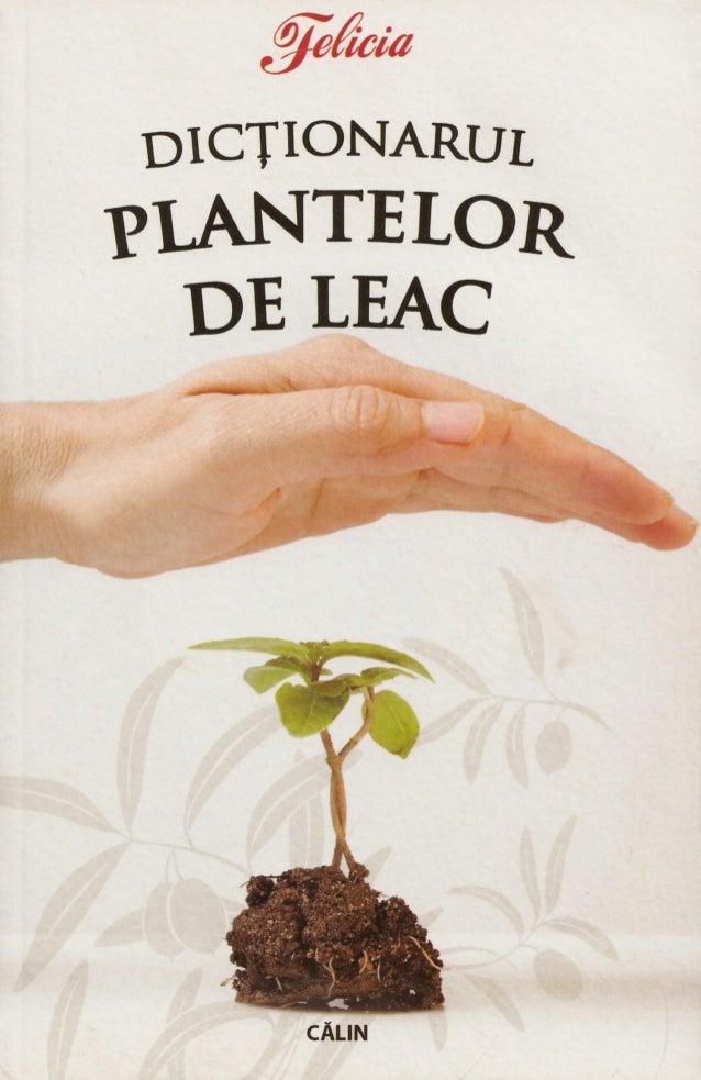 DICȚIONARUL  PLANTELR DE LEAC