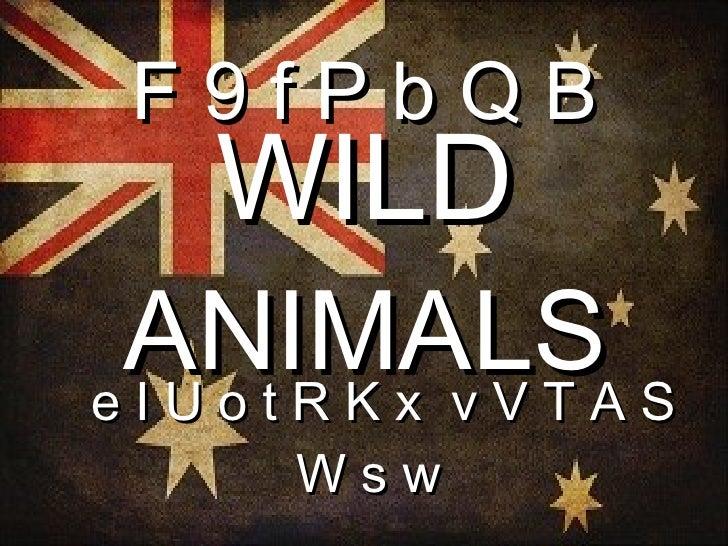 F9fPbQB  WILD ANIMALSA SeIUotRKx vVT    Wsw