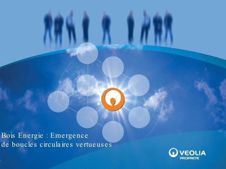 Bois Energie : Emergence  de boucles circulaires vertueuses