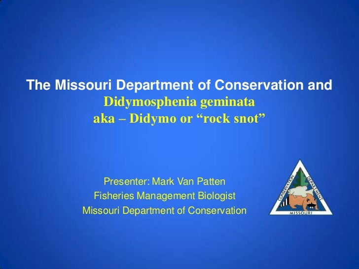 """The Missouri Department of Conservation and          Didymosphenia geminata         aka – Didymo or """"rock snot""""           ..."""