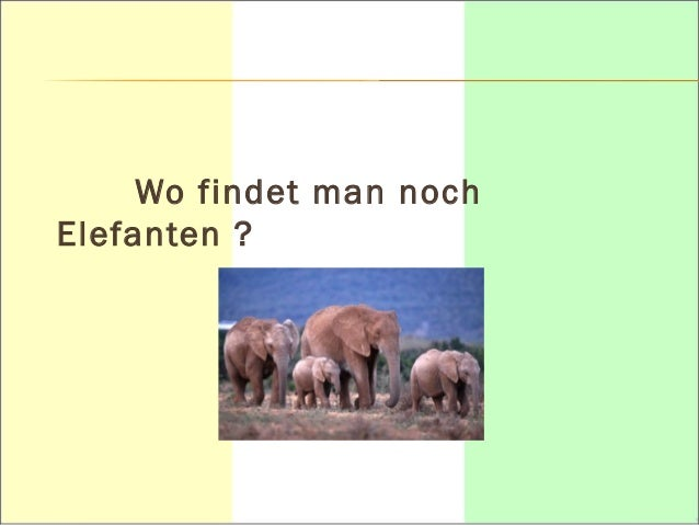 Wo liegt die « Waldzone » ?