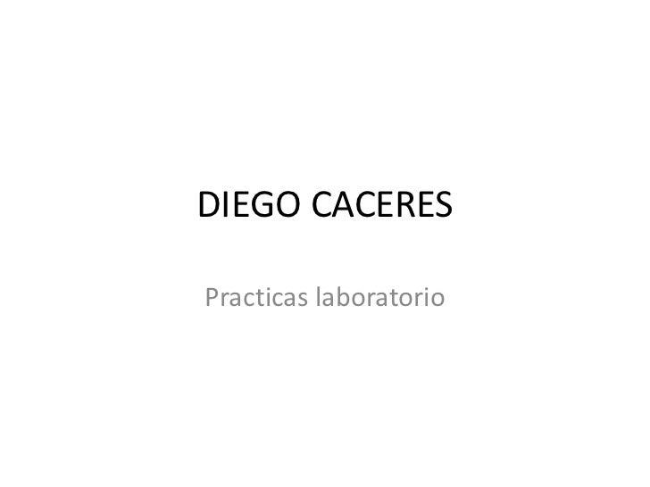 DIEGO CACERES<br />Practicas laboratorio<br />