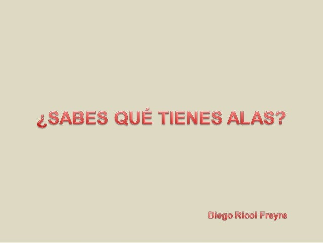 Diego ricol freyre