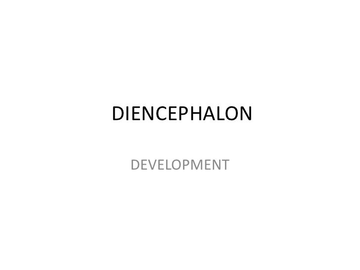 DIENCEPHALON DEVELOPMENT