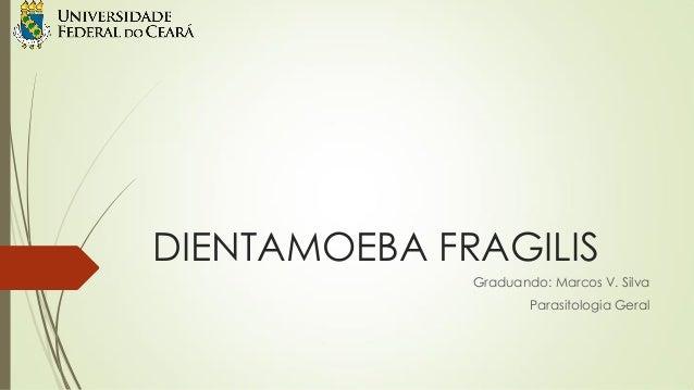 DIENTAMOEBA FRAGILIS Graduando: Marcos V. Silva  Parasitologia Geral