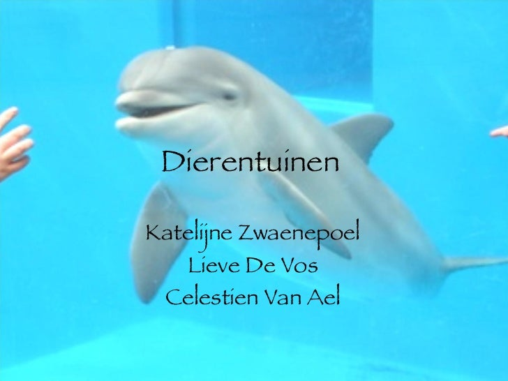Dierentuinen  Katelijne Zwaenepoel Lieve De Vos Celestien Van Ael